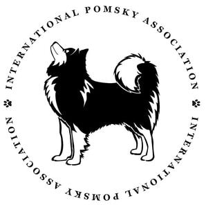 International Pomsky Association Certification